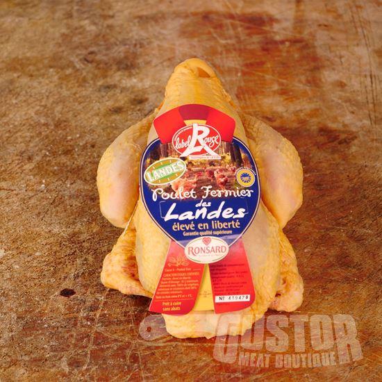 poulet des landes, gele kip